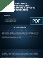1principales Enfermedades Bacterianas de Moluscos y Crustaceos Mimbela Manrique Vallejos