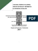 """""""Diagnostico Microscopico y Molecular de Blastocystis Hominis en Una Poblacion Rural de Tarapoto - San Martin - Peru"""""""