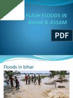 disaster management ppt.pptx