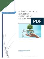 _GUÍA_PRÁCTICA_N°_04 (1).docx