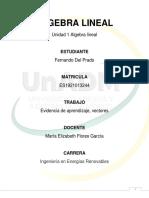 Evidencia de aprendizaje unidad 1 álgebra lineal