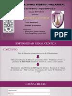 SEMINARIO ERC .pptx