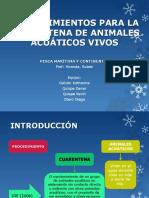 Cuarentena en Animales Acuaticos