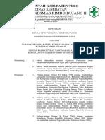 Sk-struktur Organisasi Puskesmas