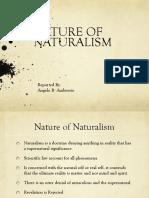 Naturalism Report