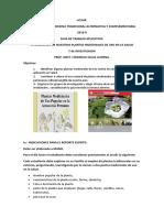 Guia de de Plantas Medicinales y Recordando La Organización de Su Investigación