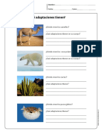 ecosistema 2.pdf