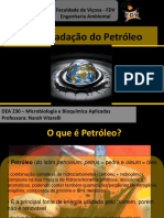 Biodegradacao Do Petroleo