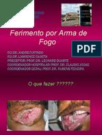 ferimentoporarmadefogo-140213173342-phpapp01