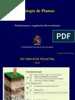 Fitohormonas y Regulacion Del Crecimiento