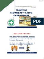 Comite de Seguridad y Salud Ocupacional
