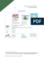 pd innovacion aprendizaje de idiomas y visual thinking ampliado