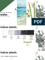Indoor Plants, Bamboo, Water