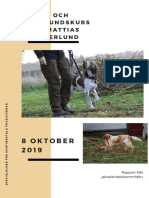 Valp-/unghundskurs för Mattias Westerlund