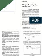 Capítulo 5. Principios de Catalogación y Clasificación