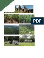 Imagens de Tikal