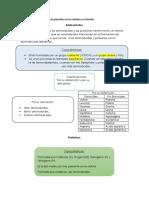 Célula.1.2.1.2.pdf