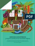 Servicios Ecosistemicos y Riesgo de Su Perdida Para Las Comunidades Indigenas