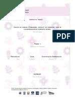 feria345_01_cultivo_de_cilantro_coriandrum_sativum_con_diferen(1).pdf