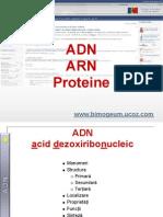 ADN_ARN_Proteine