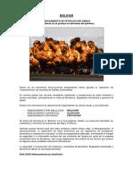 TEORIA DEL BOILOVER.pdf