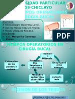 Suturas Cirugia Bucal EXPOSICIÓN