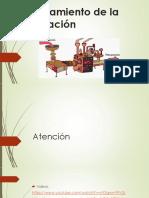 Procesamiento de la información- Psicología