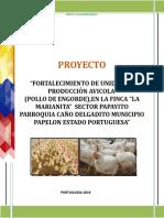 PLAN DE INVERSION  POLLO ENGORDE 50 MILLONES. LA MARIANA.doc