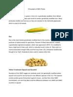 5 Example of GMO Plants