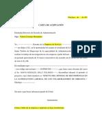 Carta de Consentimiento Modelo