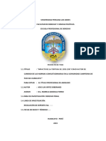 Planteamiento y Formulación Del Proyecto Investigacion i 2019 2