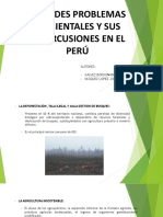 Grandes Problemas Ambientales en el Perú - Galvez Bordonabe, Vasquez Lopez.pptx