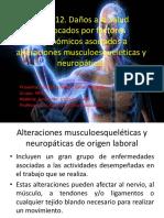Factores Ergonómicos Asociados a Alteraciones Musculoesqueléticas y Neuropáticas