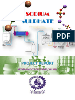 Sodium Sulphate merge.pdf