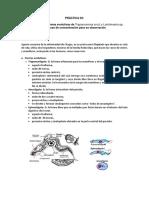 PRÁCTICA 03 TRYPANOSOMA Y LEISHMANIA.pdf