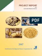 Ginger Processing.pdf