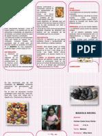dokumen.tips_triptico-la-mashua.pdf
