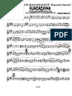 Huachina.pdf