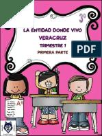 1.-interactivo-entidad-Veracruz.pdf
