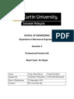 PP Six Sigma Report