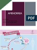 Amenorrea (1) - Copia