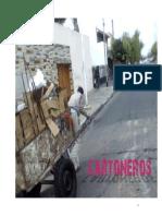 cartoneros.pdf