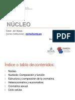 Tema 9 - Nucleo