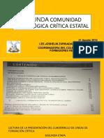 SEGUNDA COMUNIDAD LINEAS DE FORMACIÓN CRÍTICA.pptx