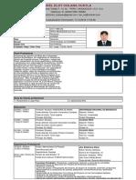 ModeloCV (2).pdf