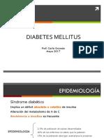 Diabetes 2017.pdf