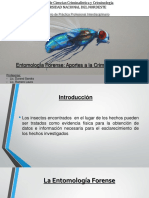 UNNE - Criminalística - Seminario de Práctica Profesional - Entomología Forense