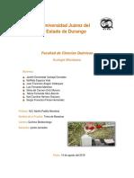 Ecologia Reporte 1