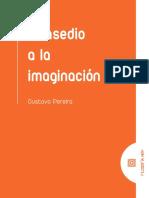 Introducción Libro Gustavo Pereira