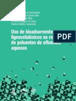 Uso de Bioadsorventes Lignocelulósicos Na Remoção de Poluentes de Efluentes Aquosos